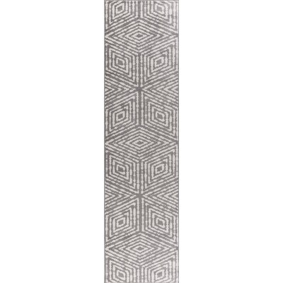 Catalano Gray Area Rug Rug Size: Runner 2'7