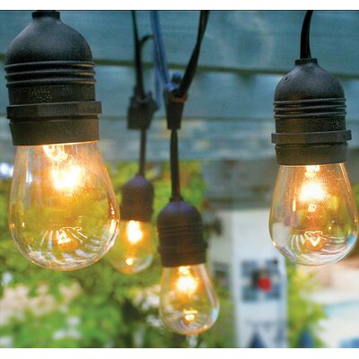 Vintage Commercial Patio 12-Light Outdoor Hanging Sockets