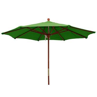 9 Market Umbrella Color: Macaw