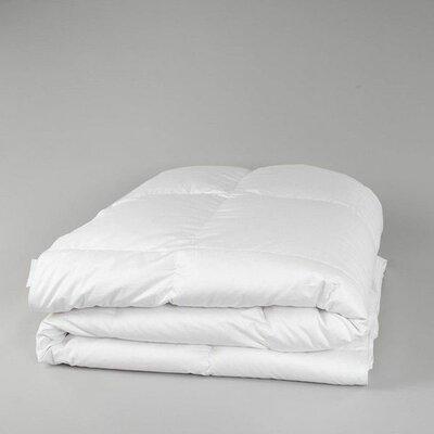 Deluxe Midweight Down Comforter Size: Queen