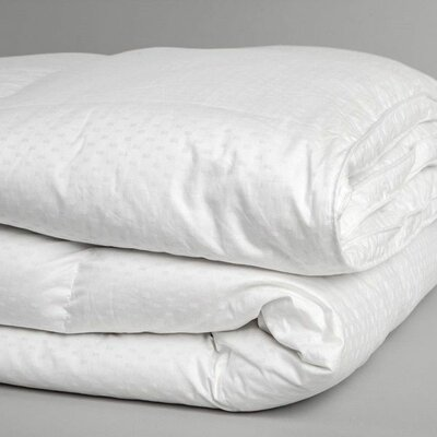 Superior Midweight Down Alternative Comforter Size: Twin