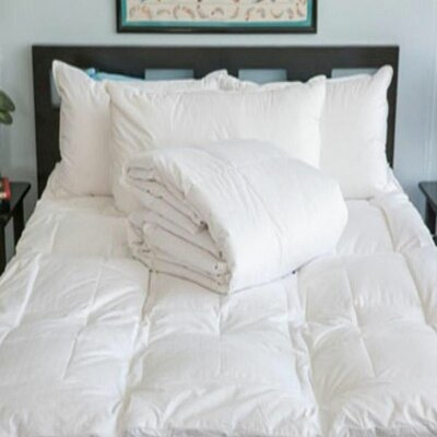 3 Piece Comforter Set Size: Twin XL