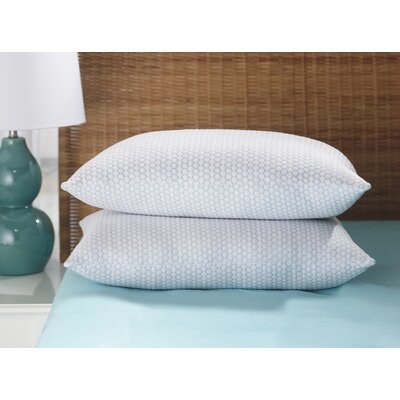 Temperature Regulating Moisture Wicking Pillow Size: King