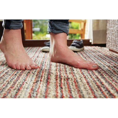 Muddle Mat Candy-Stripe Doormat Rug Size: 28 x 32