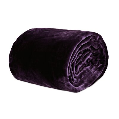 Azura Ultra Soft Korean Mink Reversible Blanket Size: Queen, Color: Purple