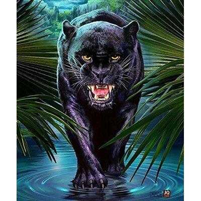 Black Panther Mink Blanket