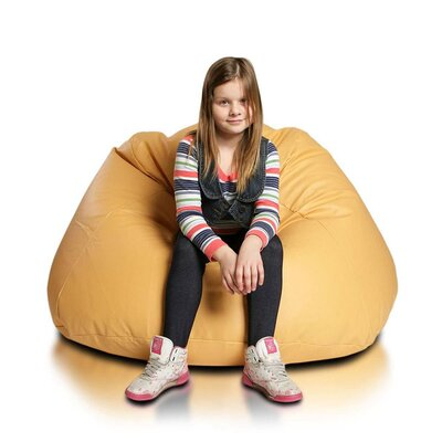 Bean Bag Chair Upholstery: Gold