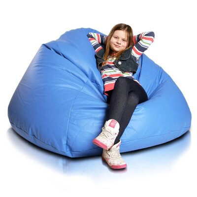Bean Bag Chair Upholstery: Sky