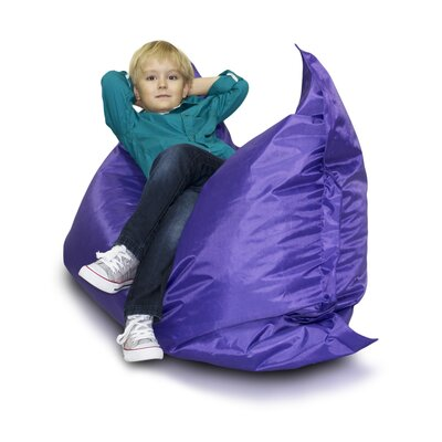 Bean Bag Chair Upholstery: Violet