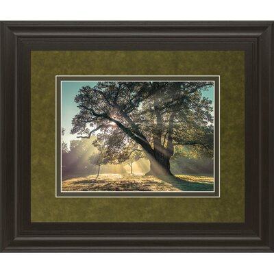 Breaking Through By A. Frank Framed Photographic Print