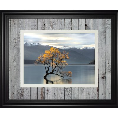 'Undisturbed' by Michael Cahill Framed Photographic Print DM5617