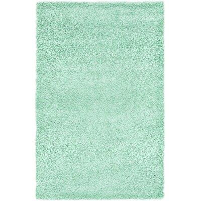 Affinity Hand-Woven Aqua Area Rug Rug Size: 5 x 8