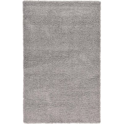 Affinity Hand-woven Silver Area Rug Rug Size: Rectangle 5 x 8