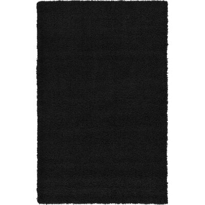 Hand-Woven Black Area Rug Rug Size: 3 x 5