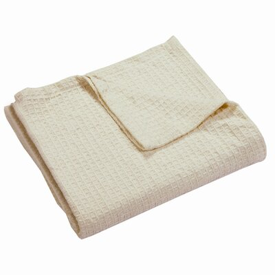 Zaida Woven Cotton Throw Blanket Color: Ivory, Size: Queen