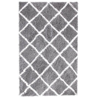 Hand-Woven Silver Area Rug Rug Size: 4 x 6