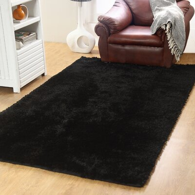 Horst Shag Black Indoor/Outdoor Area Rug