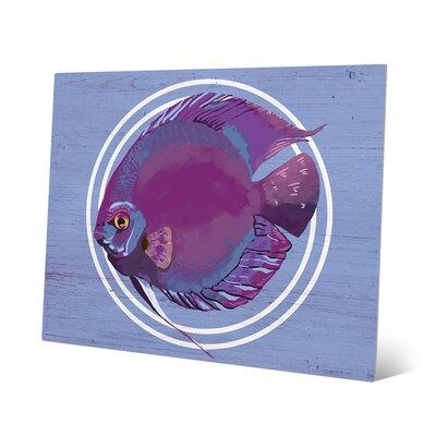 Rainbow Fish Magenta Painting Print RBH0000053MTL08X10XXX