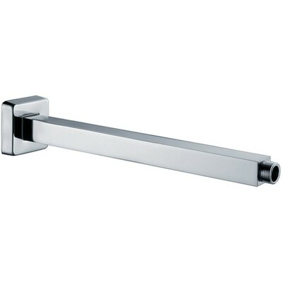 Shower Arm and Flange Finish: Chrome
