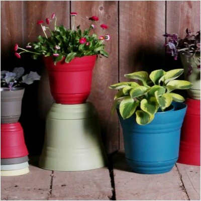 Elle Planter (Set of 6)