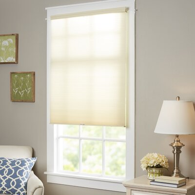 Wayfair Basics Top-Down Bottom-Up Cordless Honeycomb Cellular Shade Size: 30 W x 64 L, Color: Alabaster