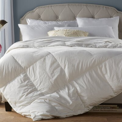 Wayfair Basics All Season Down Alternative Comforter Size: Full / Queen