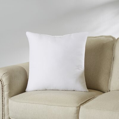 Wayfair Basics Pillow Insert Size: 20 H x 20 W x 4 D