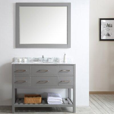 Foligno 48 Single Vanity Set with Mirror Base Finish: Gray