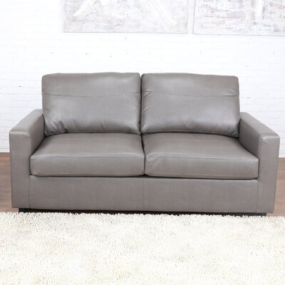 Sleeper Pull Out Sleeper Sofa Upholstery: Gray
