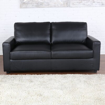 Sleeper Pull Out Sleeper Sofa Upholstery: Black