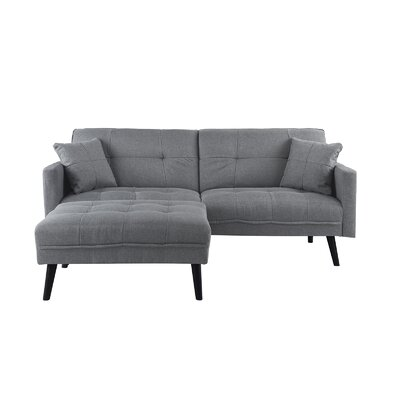 Roldan Sleeper Sofa Upholstery: Light Gray
