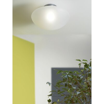 Sillabone Wall or Ceiling Light