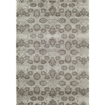 Tang Cream Area Rug Rug Size: Rectangle 13 x 18