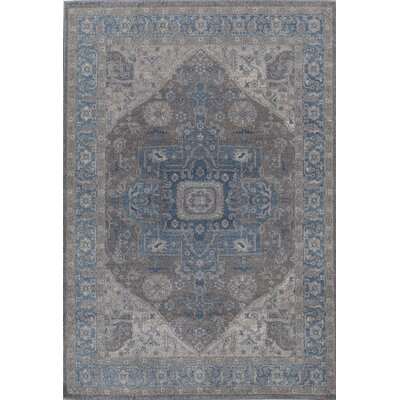 Cadencia Blue/Gray Area Rug