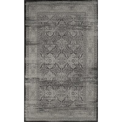 Terah Black Area Rug Rug Size: Rectangle 13 x 18