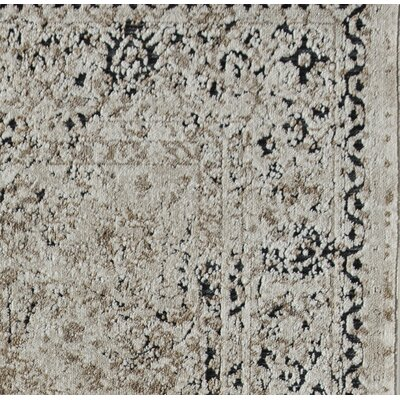 Cambridge Cream/Black Area Rug Rug Size: 5 x 8
