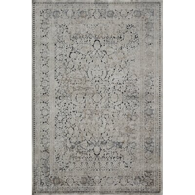 Cambridge Tan/Navy Area Rug Rug Size: 2 x 4