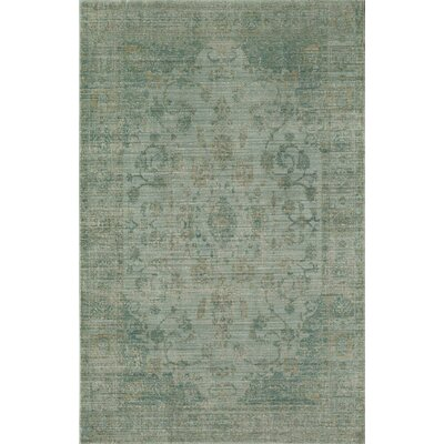 Asteria Green Area Rug Rug Size: 4 x 6
