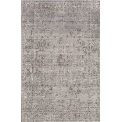 Asteria Graston Slate Gray Area Rug Rug Size: 4 x 6