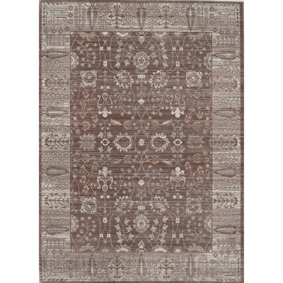 Asteria Brown/Taupe Area Rug Rug Size: 4 x 6