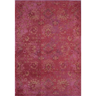 Beverly Fuchsia Area Rug Rug Size: Rectangle 53 x 76