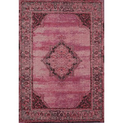 Beverly Ophelia Rose Raspberry Area Rug Rug Size: Rectangle 53 x 76