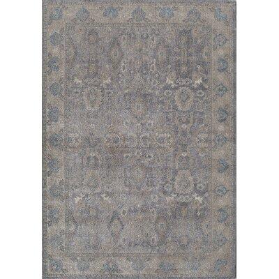 Estelle Gray/Ivory Area Rug Rug Size: 710 x 910