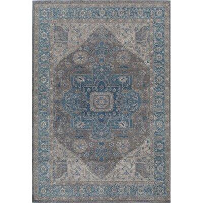 Estelle Blue/Gray Area Rug Rug Size: Runner 22 x 76
