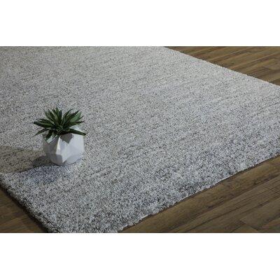 Cozy Sema Shag Gray Area Rug Rug Size: 5 x 8