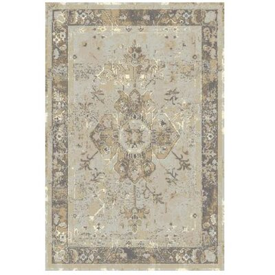 Beverly Gray Area Rug Rug Size: 53 x 76
