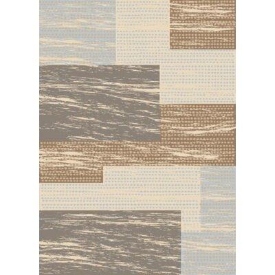 Dipak Berber Area Rug Rug Size: Rectangle 5 x 7