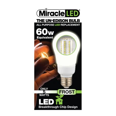 60W (5000K) LED Light Bulb