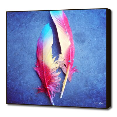 Feather of Colours by Sunny Ray Hipple Framed Photographic Print M_PR00267398_FAB