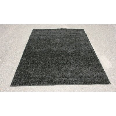 Modern Shag Black Area Rug Rug Size: Rectangle 5 x 7